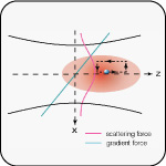 Brownian Motion in a Force Field